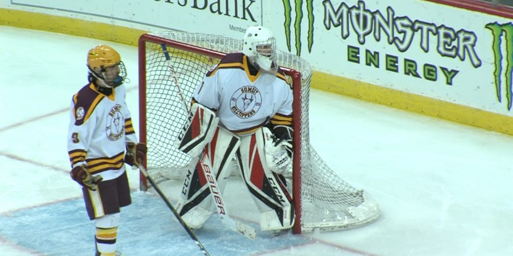 11 Great Stops Nominated for JSZ/NJ Devils' Top Save of the Year