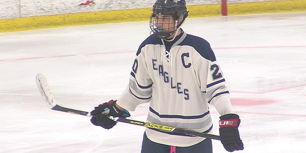 "Eagles land in state Public ""B"" hockey quarterfinals with convincing home win"