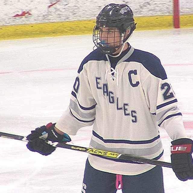 """Eagles land in state Public """"B"""" hockey quarterfinals with convincing home win"""