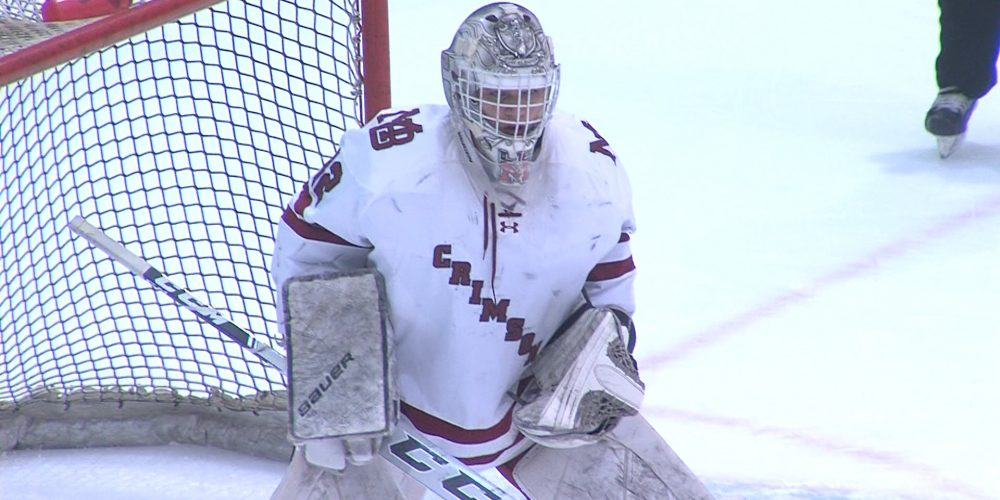 Morristown-Beard earns spot in state hockey quarterfinals