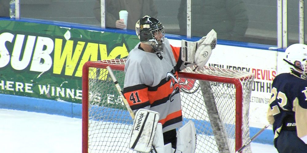 Lions advance to quarterfinals on the ice