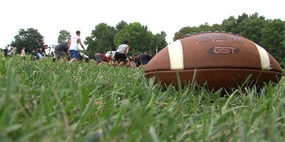 2014 SSZ high school football previews